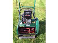 Webb Petrol Grass Cutter