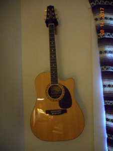 Tackimine pro series  acoustic/ electric