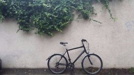 Revolution Pathfinder Bike