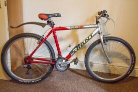 Giant Boulder Mountain Bike and Kryptonite D-Lock