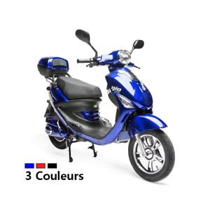 Scooter électrique Italia PR 500w+ (48v/20Ah)