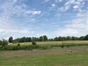 BEAUTIFUL 50 ACRES FOR SALE