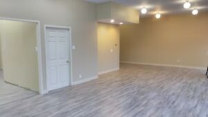 fully renovated  commercial retail / office space