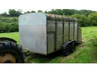Ifor williams animal trailer