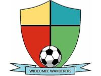 11-a-side Football Team looking for Players - Saturday Mornings