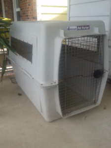 X-LARGE DOG CRATE, 31 X 35 TALL X 46 LONG, CALL #226 3344 5107
