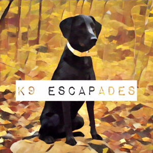 Certified Canine Coaching + Care: K9 Escapades