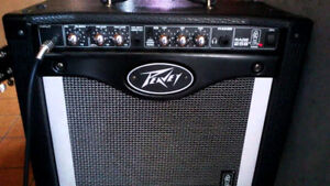 Peavey Rage 258 - 25W mint condition. 120 OBO.