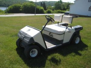 Golf Cart - Operates on Gas
