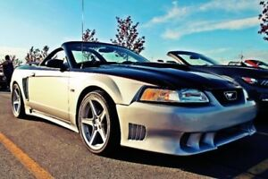 Ford Mustang Saleen Convertible-Custom 486hp