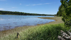 Waterfront land on Campobello Island REDUCED