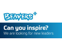 Beaver Leaders Needed - Newlands