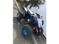 Quad bikes x2 big 250cc and 110cc both with reverse