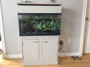 Urgent! Aquarium tout équipé avec poissons et meuble inclus