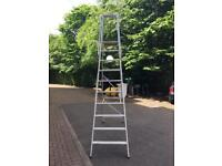 Zarges 10 step ladders with wheels