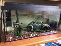 Tank is 30cm by 60cm comes with some fish and is fully set up.