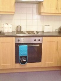 3 single and 1 double room to rent in clean, comfortable shared house, Tates Ave, off Lisburn Rd