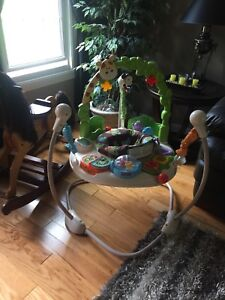 Jumperoo fisher price go wild
