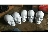 5 vampire skulls for sale
