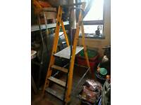 Youngmans yellow mega step ladders