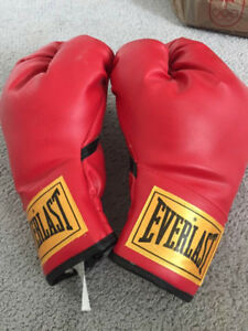 Everlast Boxing Gloves ladies small/medium for sale like new