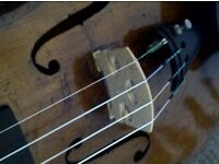 Violin Tuition Offered