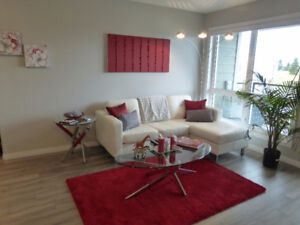 Beautifully Furnished New Condo For Rent