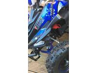Quad bike electric