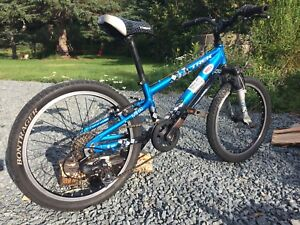 Boys youth kids Trek MT 60  mountain bike