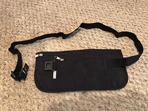 Fanny Pack / Travel Organizer