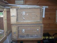 Budgerigar Breeding cages for sale plus accessories