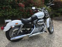 Harley Davidson XL833 Custom Sportster, Very Low Miles