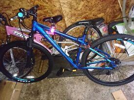 Carrera Women's Mountain bike
