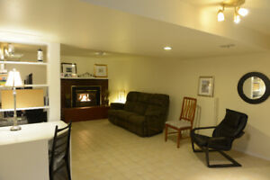 Large Luxury 2 Bedroom Basement Apartment