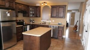 Basement to rent in Riverview