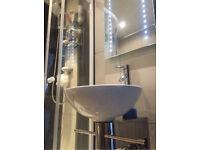 Designer sink and Mirror