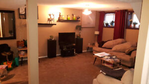 beautiful 2br basement suite backing on to greenbelt (millwoods)