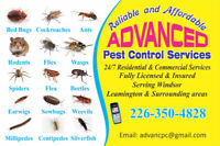 ADVANCED PEST CONTROL SERVICES, INCREDIBLE PRICE & SERVICE