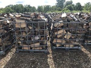 Seasoned Dry Firewood