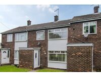 Outstanding 3 bedroom terraced house for sale in a quiet village (Burradon, Tyne and Wear)
