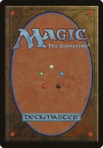 MTG Standard collection + Tournament deck and dice.