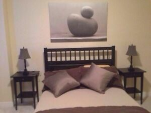 1 bedroom fully furnished and condo