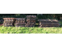 Pallets FREE to collector