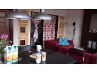 Modern flat in Erdington