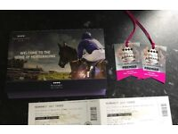 2x tickets for Jess Glynne at newmarket racecourse His Saturday 26th August premier enclosure