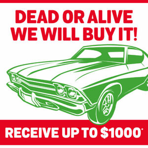 DEAD OR ALIVE, WE WILL BUY IT! UP TO 1000$* CASH!