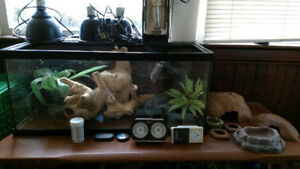 Terrarium, lights,  and accesories $220.00 OBO