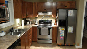 Kitchen Cabinets and Countertop (tentatively sold)