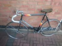 WANTED 1980's Peugeot racing bike with 501 tubing