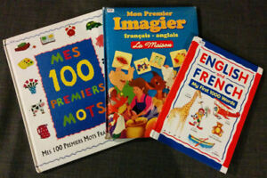 FRENCH visual dictionaries and resource books for FI teachers